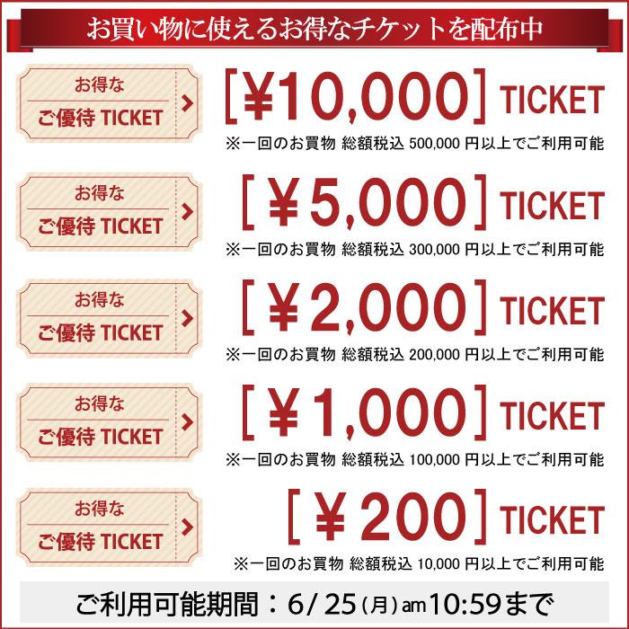 ★表示価格より最大1万円お値引き★6月25日10時59分までお得なご優待チケット配布中です!